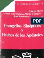 Auneau y otros - Evangelios Sinopticos y Hechos de los Apóstoles
