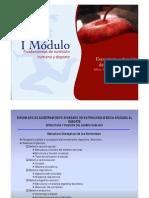 Estructura y Función del Cuerpo Humano.