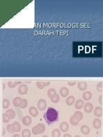 Kelainan Morfologi Sel Darah Tepi