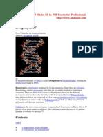 bioploymer