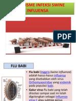 Mekanisme Infeksi Swine Influenza
