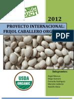 Formulación de Proyectos Inter. - Frijo Caballero