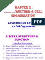 bio f4 c2 cells