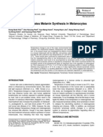 melanin synthesis