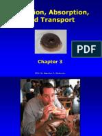 Fon 241 Chapter 3