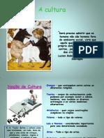 Tema 1 Psicologia B - Cultura
