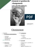 CGC - Phenomenologie