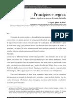 Virgiělio Afonso da Silva - Princiěpios