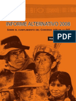 Informe Alternativo 2008