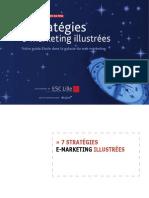 Stratégies eMarketing Web
