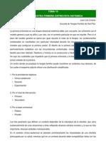 B.2.10.2. Entrevista Sistemica - Linares