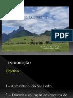 Requalificação Fluvial do Rio São Pedro