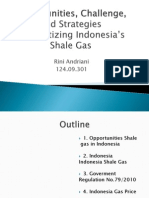 indonesia shale gas