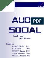 Audit Social