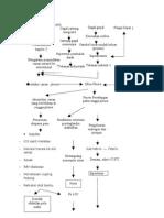 skema patofisiologi efusi pleura