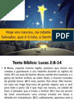 Hoje vos nasceu, na cidade de Davi, o Salvador, que é Cristo, o Senhor (Lc 2:8-14)