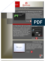 Marketing Newsletter - Enero 2013