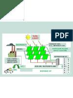 Factory Project . Algae Fuel