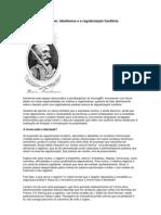 Barão de Munchausen, idealismos e a regularização fundiária - Sérgio Jacomino