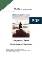 Tempestade e Ímpeto - História síntese Da Cultura Alemã
