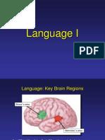 language- neuro