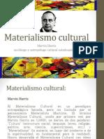 materialismo cultural