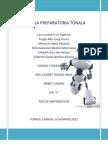 Proyecto Robot Casero