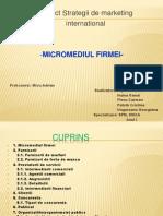 micromediul firmei