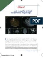 L'imagerie vasculaire cérébrale aux portes de l'angéiologie