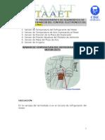 Descripcion y Prueba de Los Sensores de Un Sistema Efi _b0