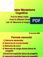 10ian 2009 Memoria Si Imaginatia 2009