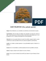 Ficha de Mantenimiento - Acer Palmatum