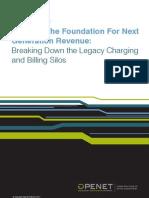 Openet Building Foundation for Next Gen Revenue WP Mar11