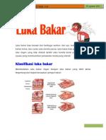 Newsletter Edis 81Luka Bakar1