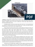 Submarine Detail Info