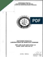 Informe IDIF sobre caso Patricia Flores