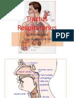 Dr Zainuri_Embriologi Dan Topografi Trac Respiratorius