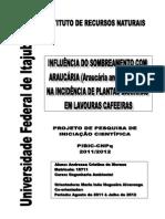 Influencia do sombreamentos por araucária em plantas daninhas