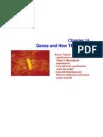 ch15 slides