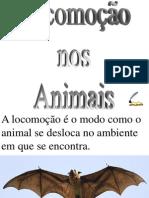 Locomoção Nos Animais