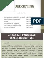 sales budgeting