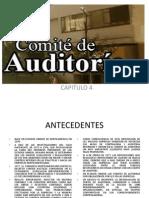 Comite de Auditoria