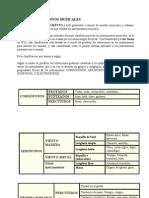 Apuntes Instrumentos - IES San Blas 2009