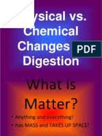Physical and Chemical Changes in Digestion