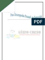 DESEMPENHO PESSOAL