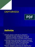 Criptorhidie