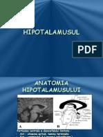 Hi Potala m Usul 2010