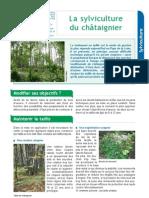 La Sylviculture Du Chataignier