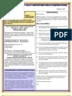 Newsletter 130110