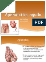 Apendicitis Dr Saidoc Complete